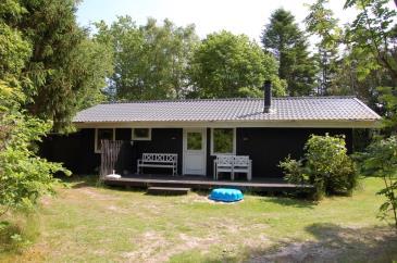 Ferienhaus 098914 - Dänemark