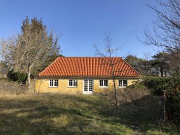 Feriehus 020229 - Danmark