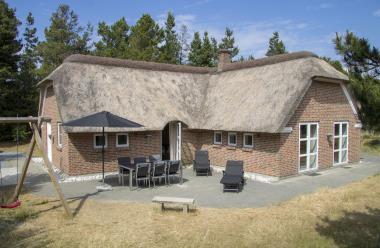 Ferienhaus 300 - Dänemark