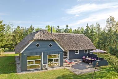 Ferienhaus 3218 - Dänemark