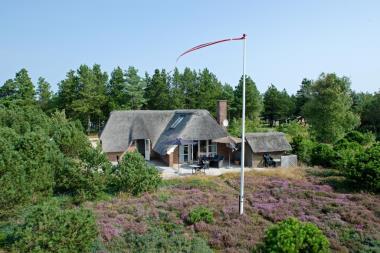 Ferienhaus 3159 - Dänemark