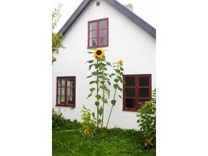 Haus Nr. S10048