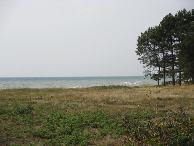10040, Yderby Lyng, Sjællands Odde
