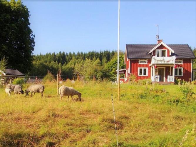 S30115, , Gräsmark
