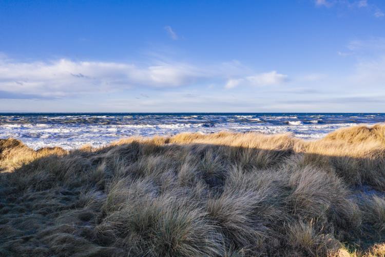 5008, Ved stranden 10, Hjørring